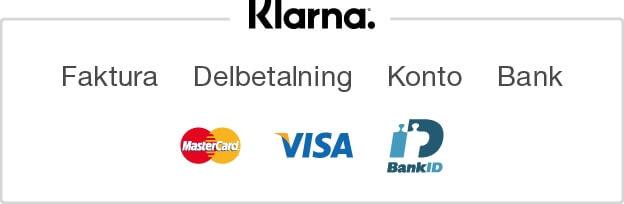Klarna Payment Options