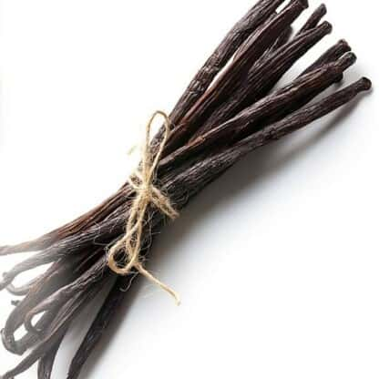 Capella Simply Vanilla
