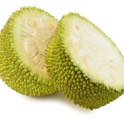 The Flavor Apprentice - Jackfruit